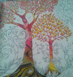 Trees With Warm Colours Johanna Basford