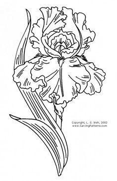 tattoo and iris flower - Bing Images Iris Drawing, Line Drawing, Drawing Sketches, Art Drawings, Drawing Flowers, Iris Tattoo, Flower Tattoos, Wood Carving Patterns, Iris Flowers