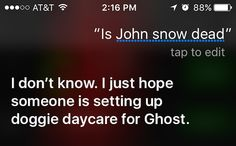 Siri has some interesting responses when you ask about Jon Snow Photos) Jon Snow, Funny Inspirational Quotes, You Ask, Dog Daycare, Funny Photos, No Response, Hilarious, Lol, Songs