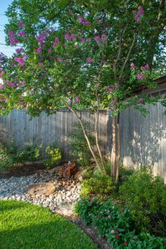 Wilmington nc gardens front yards and ground covering for Landscaping rocks myrtle beach