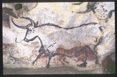 MONTIGNAC (Dordogne, 24). Grotte de Lascaux. Bilan des études. Récapitulation. Légende : Salle des taureaux, paroi gauche (nord) : représentation d'un aurochs monochrome, noir, de profil gauche, surmonté d'un signe composé noir et d'un protomé de boviné rouge (bison ?) de profil droit.