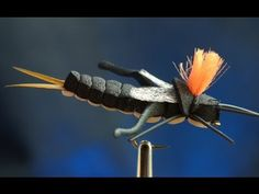 Foam Cricket - Fly tying lesson video tutorial by Curtis Fry #terrestrials