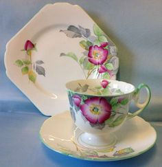 Shelley Mayfair Shape Wild Roses Pattern Tea Cup Trio