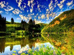 Lake summer nature wallpaper   HD Desktop Backgrounds Wallpaper ...