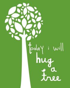 Abbracciare un albero? Un'ottima idea!