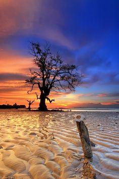 Colour of Sunset by Danis Suma Wijaya on Landscape Photos, Landscape Photography, Nature Photography, Beautiful World, Beautiful Places, Beautiful Pictures, Beach Wallpaper, Amazing Sunsets, Beautiful Sunrise