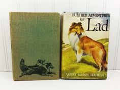 1940s Lad a Dog and Further Adventures of Lad, by Albert Payson Terhune  by naturegirl22