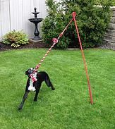 Tether Tug | Interactive Dog Toy for Big Dogs & Small Dogs