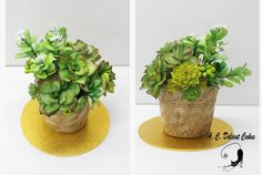 Succulents And Cactus Pot I love succulents - this was another project I worked on in preparation towards Cake international London Flower Pot Cake, Flower Pots, Succulent Wedding Cakes, Succulent Cakes, Succulent Pots, Succulents, Cactus Pot, Cacti, Cake International
