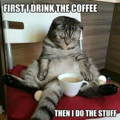 Yes coffee first....