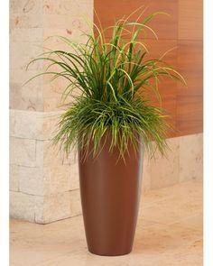 Mixed grass floor arrangement.