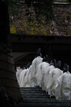 Priests lined up for Kinen-sai event at Ise Jingu Shrine, Japan: Kinen-sai is annual prayer service for a good crop.