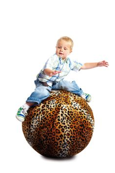 Furriballs are an exquisite range of washable faux fur gym ball covers providing an interactive, tactile experience. Manufactured to extremely high specifications all covers are double stitched for strength and durability. Machine washable at 40°C (Gym ball to be purchased separately). http://blossomforchildren.co.uk/sensory/175-furriball-cover-65cm.html