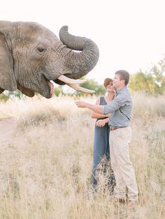 Adventurous South African safari e-sesh: http://www.stylemepretty.com/destination-weddings/2015/09/02/romantic-south-african-safari-engagement-session/   Photography: Rensche Mari - http://www.renschemari.com/
