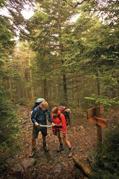 """Best Trail To Hike Just Once"" The Long Trail in Warren, Vermont"