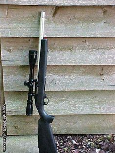 Ruger 10/22. One of two critical firearms to have in a wilderness situation. This for food and a second type for a personal defense weapon.
