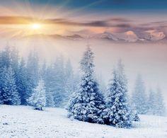 Beautiful Landscape Winter Sunset Fine Art