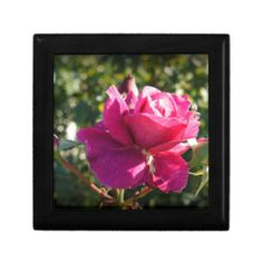 Choose from a variety of Rose gift boxes on Zazzle. Our keepsake boxes are great places to hold valuables like jewelry. Rose Drink, Rose Gift, Custom Gift Boxes, How To Make Buttons, Rose Wedding, Pen Holders, Keepsake Boxes, Decorative Throw Pillows, Wedding Gifts