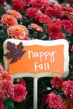 Simple and pretty fall porch on iheartnaptime.net