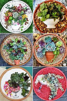 Mini Cactus Garden, Fairy Garden Pots, Dish Garden, Succulent Gardening, Succulent Pots, Herb Garden, Succulents In Containers, Cacti And Succulents, Planting Succulents