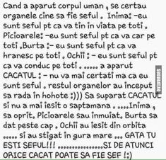 Cand a aparut corpul uman!! Funny Texts, The Funny, Haha, Funny Pictures, Jokes, Humor, My Love, Random, Pranks