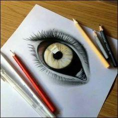 animal eye drawing