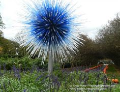 The Chihuly Dallas Star at the Dallas Arboretum #FTCDallas