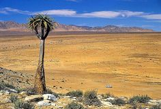 Richtersveld Cultural and Botanical Landscape, Northern Cape, South Africa. Inscription in Criteria: (iv)(v) Out Of Africa, West Africa, North South East West, Wonderful Places, Beautiful Places, South Afrika, Africa Travel, Heritage Site, Countries Of The World