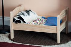 Where do Rabbits Sleep? - Bunny Beds - Bunny Approved - House Rabbit Toys, Snacks, and Accessories Bunny Beds, Bunny Room, Cat Beds, Ikea Doll Bed, Doll Beds, Ikea Bed, Rabbit Toys, Pet Rabbit, Do Rabbits Sleep