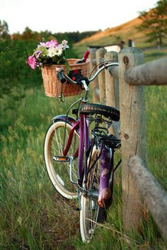 Bike Photography , Bike Print, Bike Art , Boulder Colorado , Bike Basket , Flatirons Boulder Colorado , Picnic Pure Romance ,
