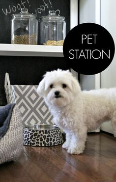 A simple pet-station that is appealing to the eye. DIY