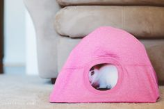 DIY Cat Tent - This