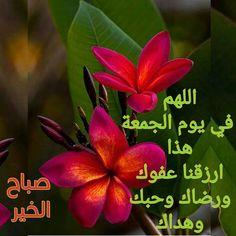 Jumma Mubarak, Plants, Plant, Planets