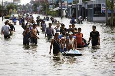 global warming impact: environmental refugee