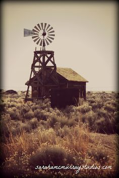 old west shack and windmill