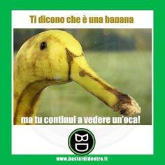 Ti dicono che è una #banana... Tagga i tuoi #amici e condividi #bastardidentro www.bastardidentro.it