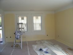 March 10 -- painting.  Jersey cream.