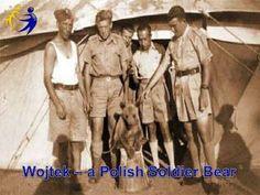 Wojtek, polish soldier bear Presentation on the history of Wojtek, Polish soldier bear