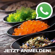 News & Aktionen als Erste erhalten? Melde dich für unseren Nooch-WhatsApp-Chat an ->  #ssbd