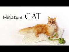 Miniature Cat - Polymer Clay Tutorial - YouTube
