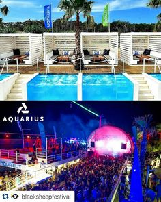 #Repost @blacksheepfestival  Presenting festival arena no.3 - @aquariuszrce. Aquarius has been officially pronounced #53 club in the world according to DJ MAG's Top 100 Clubs list. Its greatest specialty is hidden in the afterbeach VIP area where you can not only reserve your own table - but also your own private pool! #bsf2016 #zrce2016 #aquarius #blacksheepfestival #pool #privatepool #zrce #zrcebeach #islandofpag #croatia #vip #novalja #paradise #summer #festival #music