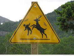 "Caution, Deer Dance-Off Ahead.  If you proceed please be prepared to ""Bring It"""
