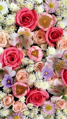 The best Spring flowers wallpaper ideas on Pinterest Golden