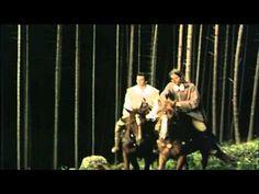 Pták Ohnivák 1997 Cz Pohádka - YouTube