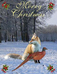Merry Christmas - Customised Christmas Cards Fine Art America