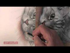 Darrel Tank's Secrets for Drawing a Realistic Cat, Part 2 (Art Studio Excerpt) - YouTube