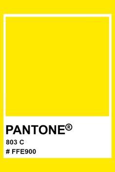 Pantone 803 C #pantone #neon #color Neon Purple, Neon Colors, Bold Colors, Pantone Orange, Pantone Colours, Pantone Number, Office Politics, Colour Swatches, Memo Notepad
