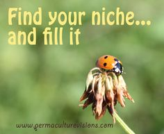 Permaculture, Affirmations, Finding Yourself, Content, Positive Affirmations, Confirmation, Affirmation Quotes