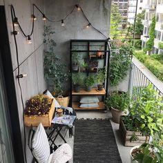 Sofie Andresen (@sofie_andresen) • Instagram-billeder og -videoer Balcony, Patio, Urban, City, Outdoor Decor, Plants, Inspiration, Instagram, Home Decor