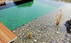 Schwimmteiche von SEPP GaLa-Bau: Naturpool und Schwimmteich